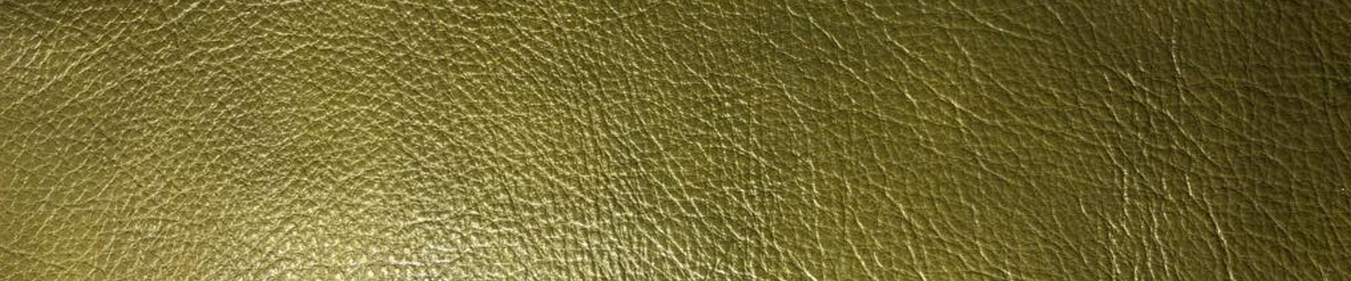 Leather is a recycled product with ecological value