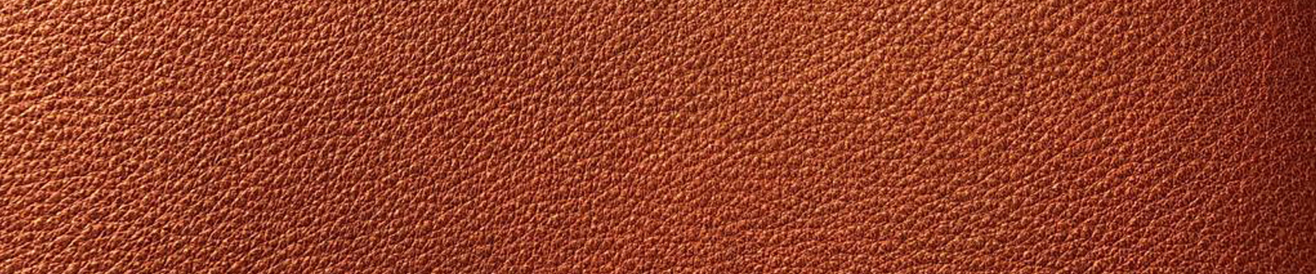 Tag: pelli per sedie